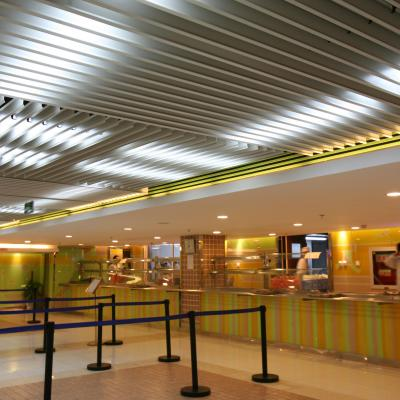 Metal Aluminium Ceilings 10