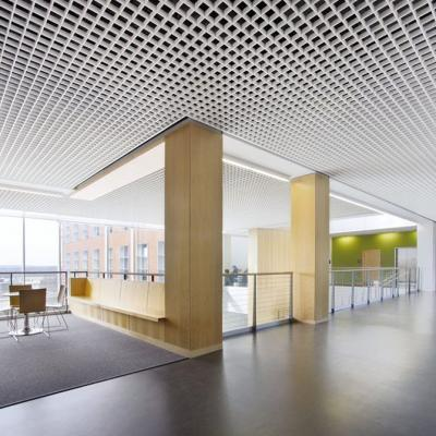 Metal Aluminium Ceilings 2